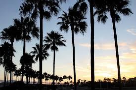 Sognando California