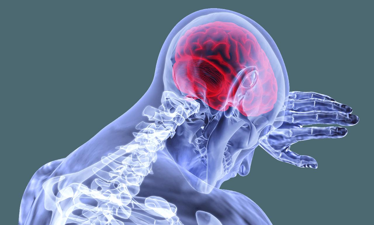 Programmi OCR e cervello umano